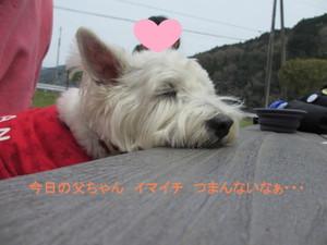 Img_9571_800x600